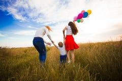 Семья идя на поле Стоковые Изображения RF