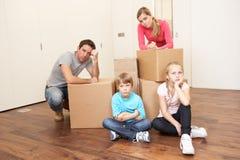 семья коробок смотря upset детенышей Стоковые Фото