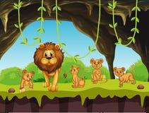 Семья льва в природе Стоковая Фотография