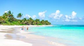 Семья наслаждаясь на красивом пляже бирюзы стоковая фотография rf