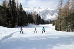 Семья на осуществляемом лыж стоковое фото rf