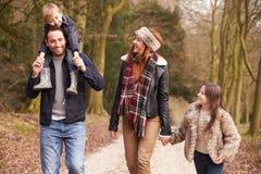 Семья на прогулке сельской местности зимы совместно стоковое изображение
