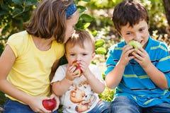 Семья на саде Стоковая Фотография