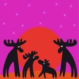Семья лосей на заходе солнца смотря звезды Стоковые Фото