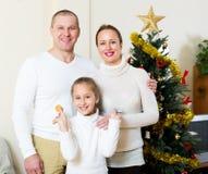 семья рождества счастливая Стоковые Изображения RF
