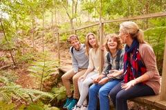 Семья сидя на мосте в говорить леса стоковые изображения