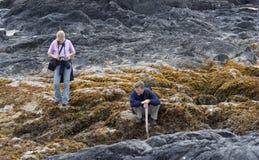 семья скал пляжа длиной Стоковое Изображение RF