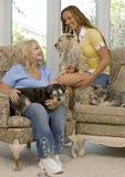 семья собак стоковое изображение rf