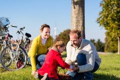 Семья собирая каштаны на отключении велосипеда стоковое фото rf