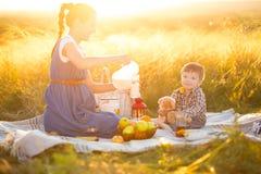 семья счастливая Беременная мать и маленький сын на пикнике Концепция образа жизни и детства Стоковые Изображения