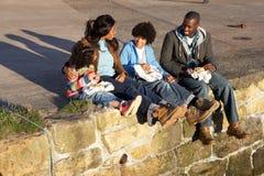 семья счастливая имеющ пикник Стоковое Изображение RF