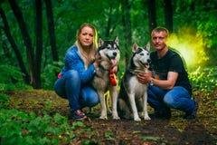 Семья с осиплыми собаками в лесе Стоковые Фото