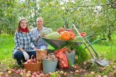 Семья с хлебоуборкой в саде Стоковые Изображения RF
