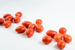 Семья томатов вишни Стоковое Фото