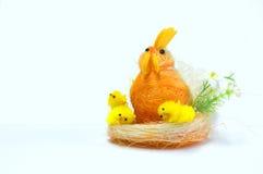 семья цыпленка Стоковые Фото