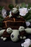 Семья черепахи Стоковые Изображения RF