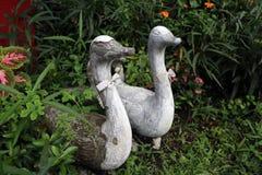 Семья штукатурки ducks в кусте стоковое изображение