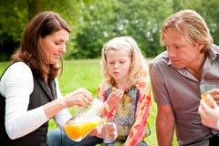 семья outdoors picnic Стоковые Фото
