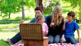 семья picnicking совместно акции видеоматериалы