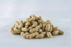 Семя арахисов Много арахисов в раковинах поднимающее вверх арахисов mkii eos dof конца предпосылки 1ds отмелое Стоковая Фотография RF