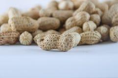 Семя арахисов Много арахисов в раковинах поднимающее вверх арахисов mkii eos dof конца предпосылки 1ds отмелое Стоковая Фотография