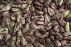 семя виноградины Стоковое Фото
