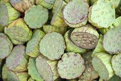 семя лотоса Стоковая Фотография RF