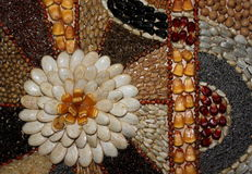 Семя предпосылки Стоковое Изображение RF
