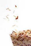 семя риса Стоковое фото RF
