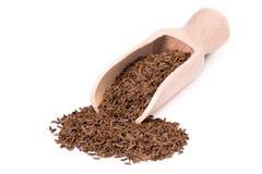 Семя тмина с лопаткоулавливателем специи Стоковые Изображения