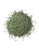 Семя травы Стоковое фото RF
