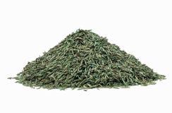Семя травы Стоковое Изображение RF