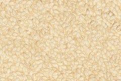 семя тыквы предпосылки Стоковые Фотографии RF