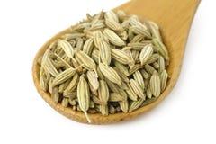 Семя фенхеля в деревянной ложке Стоковое Изображение RF