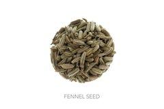 Семя фенхеля в форме круга Стоковое Фото
