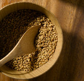 семя fenugreek Стоковые Изображения RF