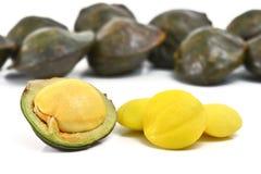 семя jiringa archidendron Стоковая Фотография