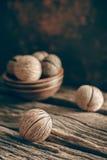 Семя ` s oddloam Cerbera, семя pong Pong Стоковое Изображение RF