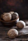 Семя ` s oddloam Cerbera, семя pong Pong Стоковая Фотография RF
