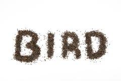 Семя Thistle используемое для того чтобы сказать птицу по буквам Стоковые Изображения RF