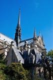 Сена Нотр-Дам de Парижа, Парижа, Франции. стоковое изображение rf