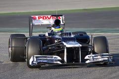 Сенна Bruno Williams F1 Стоковое Изображение RF
