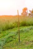 Сено вилы засаженное в луге Стоковое Изображение RF