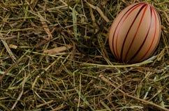Сено и пасхальные яйца стоковая фотография rf