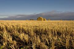 сено поля конца дня bale сверх Стоковое фото RF