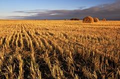 сено поля конца дня bale сверх Стоковое Изображение RF