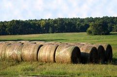 сено поля Стоковые Фотографии RF