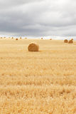 сено поля bales кладя многократную цепь Стоковые Изображения RF