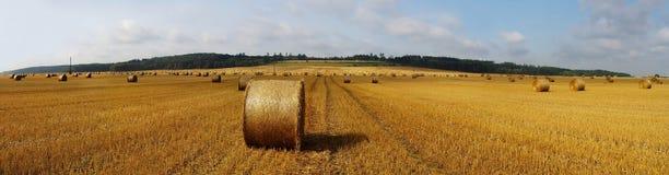 сено поля bales панорамное Стоковое фото RF
