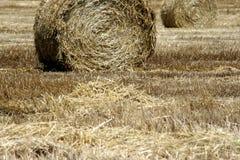 сено поля bales Стоковое Изображение RF